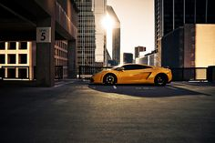 Black and Yellow Lamborghini Gallardo