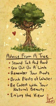 Live life like a tree. ♥