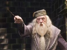 "You're damn right! : ""Master of Wizardry! "" (15 out of 15! ) - Can You Pass The Harry Potter Spells Test?"