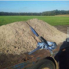 Yeah, that dirt isn't going anywhere.