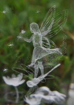 The garden faeries come at dawn, bless the flowers and then they're gone. As fadas do jardim vêm de madrugada, abençoa as flores e, em seguida, a eles se foram. Fairy Dust, Fairy Land, Fairy Tales, Magical Creatures, Fantasy Creatures, Fantasy World, Fantasy Art, Elfen Fantasy, Love Fairy