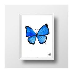 Blue butterfly watercolor painting wall art print Blue and white... ($11) ❤ liked on Polyvore featuring home, home decor, wall art, blue butterfly painting, blue and white home decor, butterfly wall art, aqua wall art and blue painting