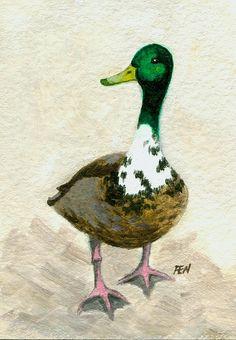 A Proud Duck by Jingfen Hwu, #jingfenhwu