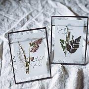 My Desk,ポスター,フォトフレーム,植物,ハンドメイド,ポストカードに関連する他の写真