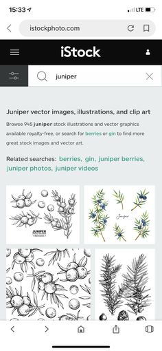 12 Treaty Drawings Ideas Drawings Plant Drawing Botanical Illustration Black And White