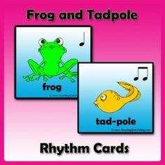 frogs tadpoles