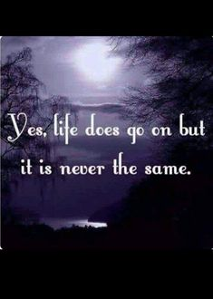 Yes, Life does go on but Never the same. Life is so different with you gone daddy. Love & miss you so much! Miss You Daddy, Miss You Mom, Rip Daddy, I Miss My Family, Missing My Son, Missing You So Much, Missing Someone Who Passed Away, Missing Mom In Heaven, Grieving Quotes