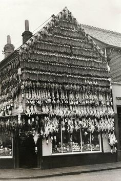 1939: Butcher in High Wycombe England. I'm sure this was a pretty fragrant place. The question is, did the butcher take all these carcasses inside at night or just leave them outside?