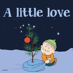 Christmas - Linus - A little love. Charlie Brown's Christmas Tree Meu Amigo Charlie Brown, Charlie Brown Und Snoopy, Charlie Brown Quotes, Christmas Quotes, Christmas Love, Christmas Pictures, Christmas Classics, Merry Christmas, Christmas Nativity