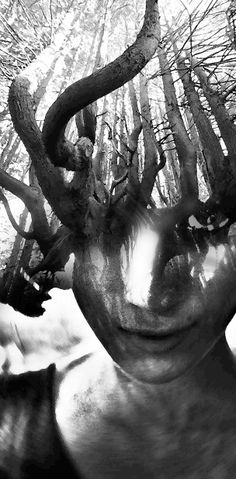 By Jerry Uelsmann Jerry Uelsmann, Double Exposure Photography, White Photography, Abstract Photography, Travel Photography, Exposition Photo, Multiple Exposure, Spanish Artists, Portraits