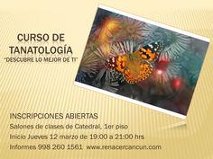 #CursodeTanatología Aprende a construir todas tus calles en el hoy. INSCRIPCIONES ABIERTAS 998 260 1561 www.renacercancun.com/cursos