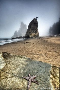 Rialto Beach, La Push, Olympic Peninsula, Washington by Josh Trefethen Western Washington, Washington State, Everett Washington, Seattle Washington, Beautiful Places To Visit, Places To See, Beautiful Beaches, Rialto Beach, Evergreen State