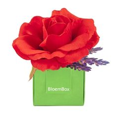 BloemBox Rose & Lavender Sachet Bella Rouge