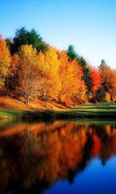 """Autumn. 21 mai 2016:"""" Couleurs simples de l'automne, jaune, rouge, vert, bleu, peut-être un peu de violet, toutes en nuances déclinées, la nature fait ça mieux que les artistes peintres""""."""