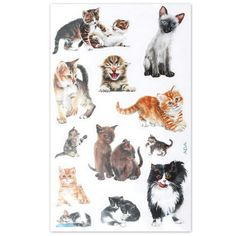 gattosi adesivi    www.gattosi.com