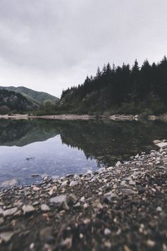 { by the lake } elena morelli