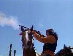 The High Chaparral, created by David Dortort (Bonanza), award-winning TV western.  http://thehighchaparralreunion.com/   #high chaparral  #bonanza #NBC full episodes #high chaparral cast #high chaparral DVD
