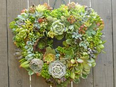 Heart Shaped Succulent Wreath