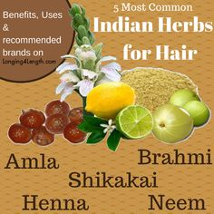 Indian Herbs for Hair | Benefits and Common Uses