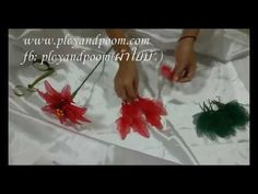 How to stockingflower ( POINSETTIA)by ployandpoom (ผ้าใยบัว) - YouTube
