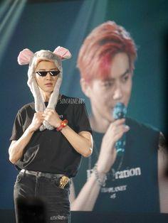 Chanyeol - 191123 Exoplanet - The ExpℓOration in Jakarta Credit: Sunshinesbby. Baekhyun, Park Chanyeol Exo, Chanbaek, True Love Photos, Teenage Love, Exo Concert, Kim Minseok, Exo Memes, K Idols