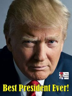 From breaking news and entertainment to sports and politics, get the full story with all the live commentary. President Quotes, Trump Is My President, Greatest Presidents, American Presidents, I Love America, God Bless America, Trump Wins, Vote Trump, Pro Trump