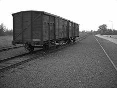 Auschwitz II Birkenau : pic by John Smeets, Auschwitz Study Group Member.
