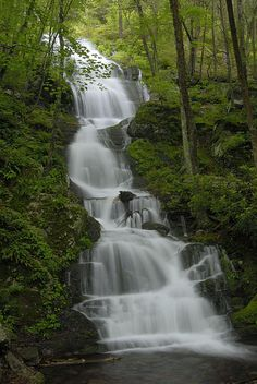 Buttermilk Falls, Stokes State Forest Preserve, Northwestern New Jersey; photo by Stephen Vecchiotti
