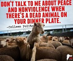 Stop Being A Hypocrite!!Who Are You Fooling?!!Have Compassion!!Go Vegan!!