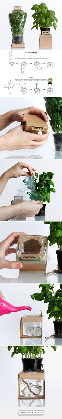 Self-Watering Herbs by Duncan Anderson. Source: Packaging Design Served, work featured on Packaging of the World. Vegetable Packaging, Spices Packaging, Smart Packaging, Seed Packaging, Flower Packaging, Pretty Packaging, Brand Packaging, Self Watering, Packaging Design Inspiration