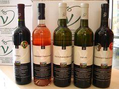 Nový tovar z vinárstva Miroslav DUDO nájdete v predajni aj v e-shope www.vinopredaj.sk  #dudo #vinarstvodudo #vinarstvo #vino #wine #wein #dunaj #devin #cabernetsauvignon #rizling #veltlinskezelene #rose #rosee #vinodudo