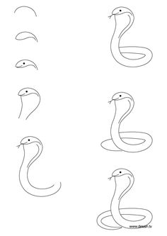 How to Draw a Dog Step by Step Instructions | learn how to draw a cobra with simple step by step instructions