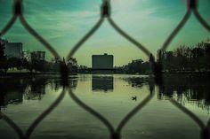 Eur' s lake - Rome by Alessandra Ballerini  on 500px