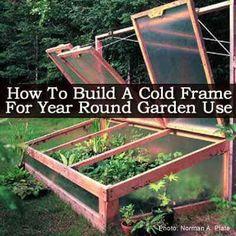Cold frame for gardening.