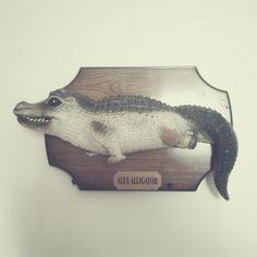Alex The Alligator, bought on internet sale. / Photo by @Tomasz Jurecki #wysokipolysk #fleastyle #alexalligator