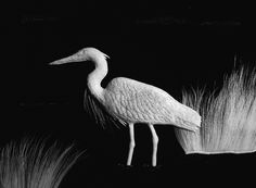 Heron :: Caribou Hair Art