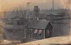 Real Photo Postcard Anchor Lumber Company Lumber Mill & Yard~108058