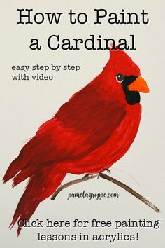 art painting Learn how to paint a Cardinal one easy stroke at a time. Beginner friendly Cardinal painting lesson in acrylics with free video. Easy Canvas Painting, Simple Acrylic Paintings, Acrylic Painting Techniques, Easy Paintings, Diy Painting, Bird Painting Acrylic, Bird Paintings, Indian Paintings, Easy Painting Projects