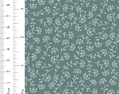 Ginger Lily Studio Expressions: AS0103 cw02