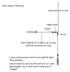 fishing rig diagrams | fishing rigs diagrams car diagrams carp rig diagrams mind map diagrams ...