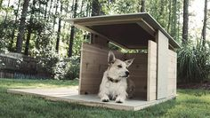 Cool Digs for the Modern Dog | Yanko Design