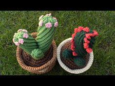 CACTUS DE GANCHILLO, RETORCIDO CON FLORES - YouTube Crochet Cactus, Crochet Art, Crochet Flowers, Free Crochet, Crochet Patterns, Crochet Flower Tutorial, Madhubani Painting, Crochet Videos, Ribbon Embroidery