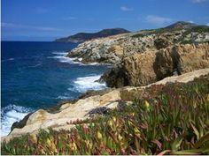 Korsika, Frankrig. (2002 og 2006)