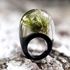 Moss Ring, Unique Clear and Black Resin Ring with Natural Moss, Terrarium Jewelry, Bold Jewelry, Statement Jewelry, Green, Natural