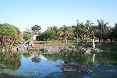 Santa Cruz prepara la apertura su mayor parque público, el Palmétum - http://canariasday.es/?p=53679
