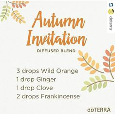 Autumn Invitation - Essential Oil Blend