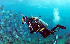 Mergulho em Bombinhas - SC
