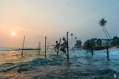 'Up Above' by Subodh Shetty on 500px #Srilanka #Weligama #Koggala #Beach #Travel #Photography #Fishing #Stick #Fisherman #Subodh #Shetty