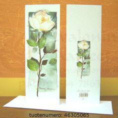 Valkoinen ruusu (5065)