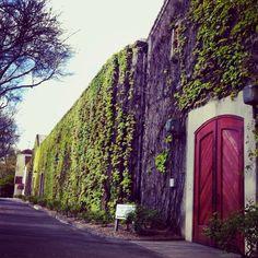Beaulieu Vineyards (BV) - historic winery in St. Helena, Napa Valley